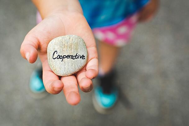 cooperative-1246862_960_720.jpg