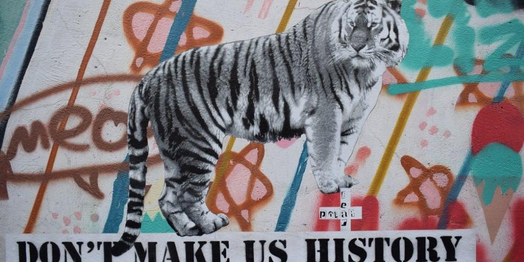 tiger history